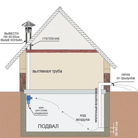устройство вентиляции в подвале частного дома