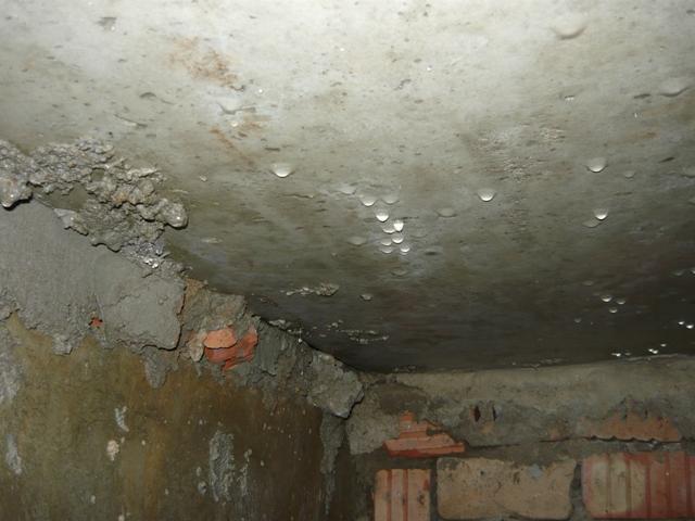 сырость в подвале частного дома